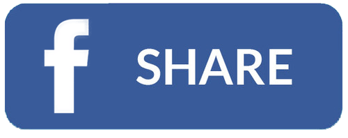 Share this Shauna Shapiro Ph.D. biography on Facebook